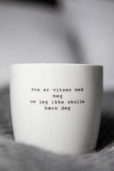 Bilde av HVA ER VITSEN MED MEG - SØGNE HOME BY TRYGVE SKAUG